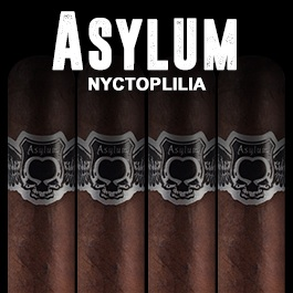 Asylum Nyctophilia