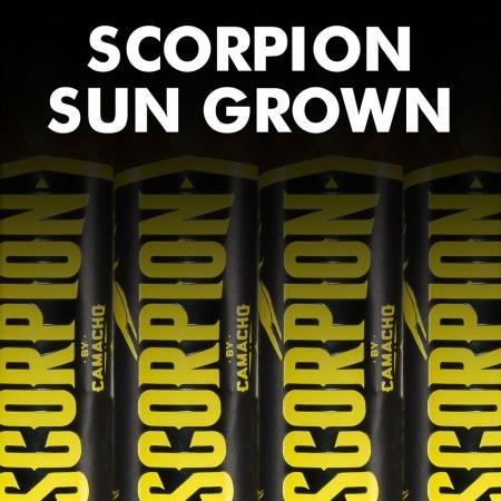 Camacho Scorpion Sun Grown