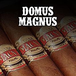 Casa Magna Domus Magnus