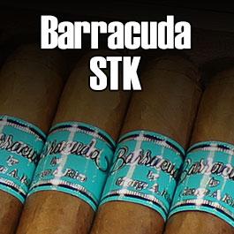 Barracuda STK by George Rico