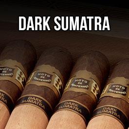 Hoyo de Monterrey Dark Sumatra