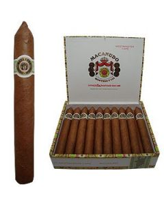 Macanudo Westminster-tapered
