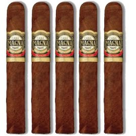 Casa Magna Colorado Torito NATURAL pack of 5