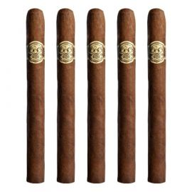 Room 101 San Andres 615 NATURAL pack of 5